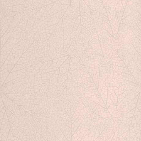 graham brown papier peint clairi re. Black Bedroom Furniture Sets. Home Design Ideas
