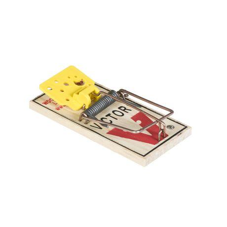 The Victor Electronic Mouse Trap delivers a high-voltage shock to eliminate mice in less than 5 seconds. Killing up to mice per set of batteries (4AA), this trap is a great value! Easy to use, the trap is simply baited, placed against the wall and turned on/5.