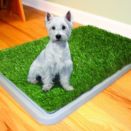 Dog Grass Patch Reviews