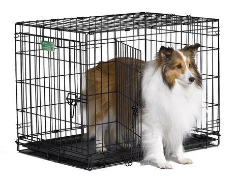 30 Quot Icrate Dog Cage 2 Door Walmart Canada