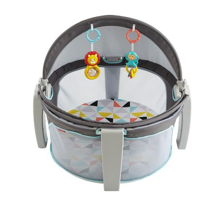 Fisher-Price On-The-Go Baby Dome Grey