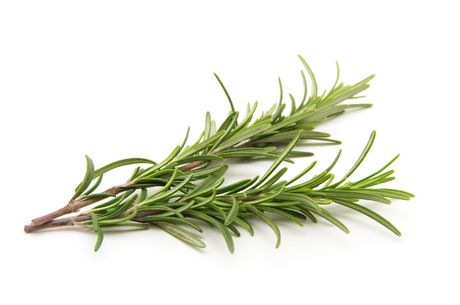 How to Store Fresh Rosemary