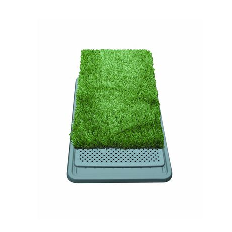 Large Mat For Dogs
