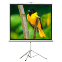 "EluneVision Portable Tripod Projector Screen - 100"" - 4:3 Aspect Ratio"