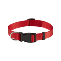 "1"" (25mm) Adjustable Dog Collar Red"