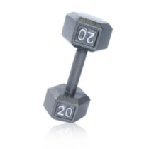 20 lb Hex Dumbbell