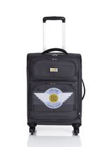Via Rail James Bay 20-inch 4-Wheel Carry-on Spinner Luggage