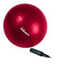 PurAthletics Exercise Ball - WTE1018255R