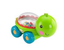 Tortue Poppity Pop de Fisher-Price Tortue