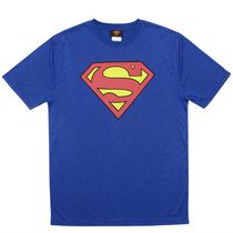 Superman Men's Moisture Wicking Short Sleeve Tee Shirt L/G