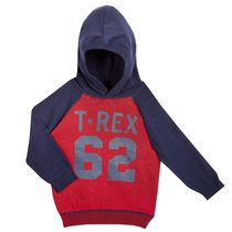 George Toddler Boys' Hooded Sweater 4T
