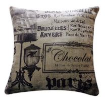 Paris Print Cushion