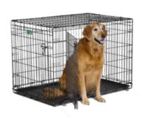 "42"" iCrate Dog Cage 2-Door"