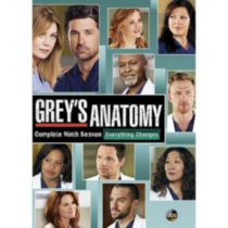 Grey's Anatomy: Complete Ninth Season - Everything Changes