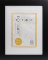 Museum Document Frame