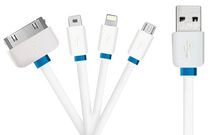 Exian  4 in 1 Lightning/Micro USB/30 Pin/Mini USB to USB Cable - White