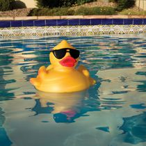 Blue Wave Derby Duck Pool & Spa Chlorinator
