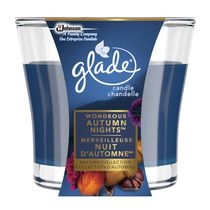 Glade® Wondrous Autumn Nights™ Candle