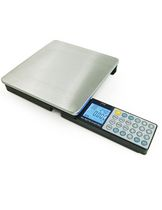 Digital nutritional kitchen scale with foldaway  control panal