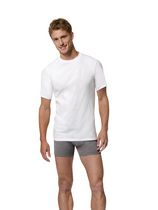 Hanes Men's Tagless X-Temp C-Neck T-shirt