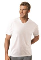 Hanes Men's Tagless X-Temp ComfortBlend® V-Neck T-Shirt Large