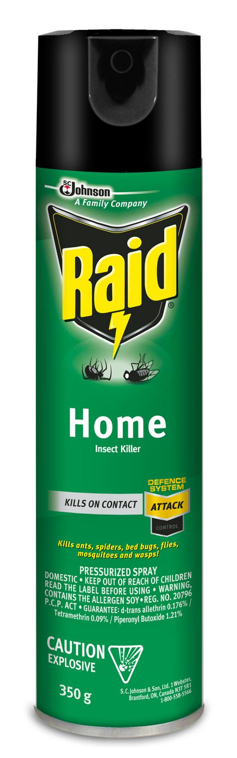 Raid Insecticide Pour Insectes Domestiques 350g Walmart Canada