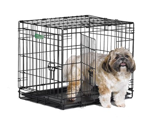 Midwest Homes For Pets 24 Icrate Dog Cage 2 Door Walmart Canada