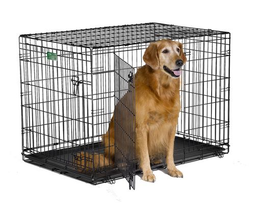 Midwest Homes For Pets 42 Icrate Dog Cage 2 Door Walmart Canada