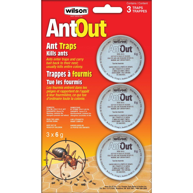 Wilson Antout Ant Traps Walmart Canada