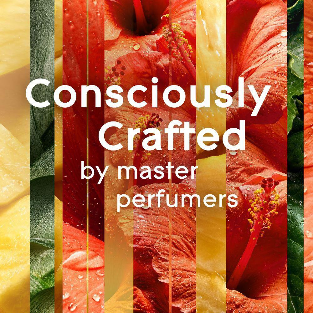 CHANDELITA Bougie Daromath/érapie Parfum/ée /à la c/èdre pour nettoyer l/énergie assainir et purifier lesprit et de cire de soja pour lutter contre la fatigue et le fl/éau
