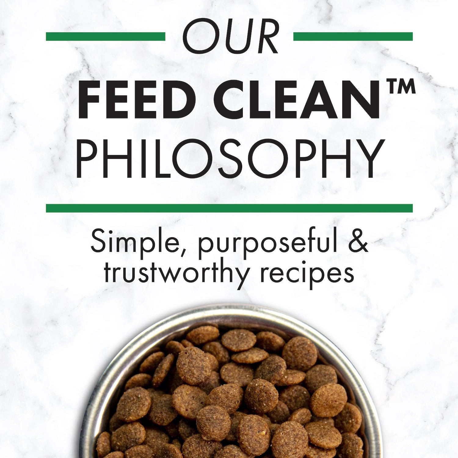 Nutro Wholesome Essentials Large Breed Puppy Pasture Fed Lamb Rice