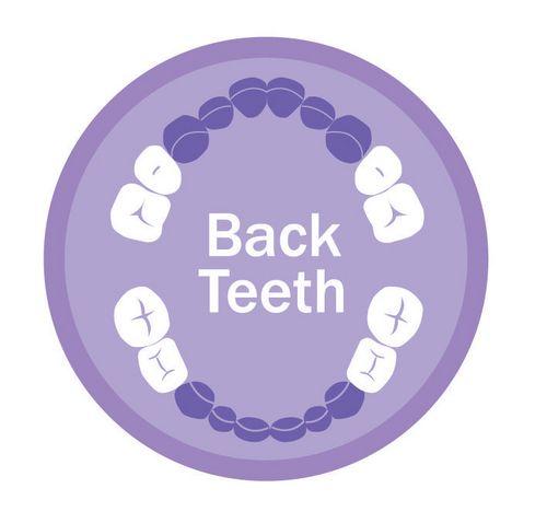 NUK All Stages Avec diff/érents niveaux de duret/é Anneau de dentition Pour les b/éb/és /à partir de 3 mois