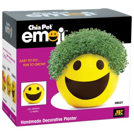 Chia Pet Smiley Emoji Handmade Decorative Planter | Walmart