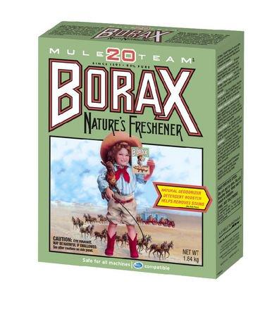 20 Mule Team Borax Laundry Booster 1 84 Kg Walmart Canada