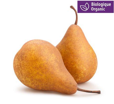 Pear, Organic Bosc - image 1 of 1