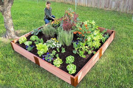 "Classic Sienna Raised Garden Bed  8' x 8' x 11"" - 2"" profile - image 1 of 1"