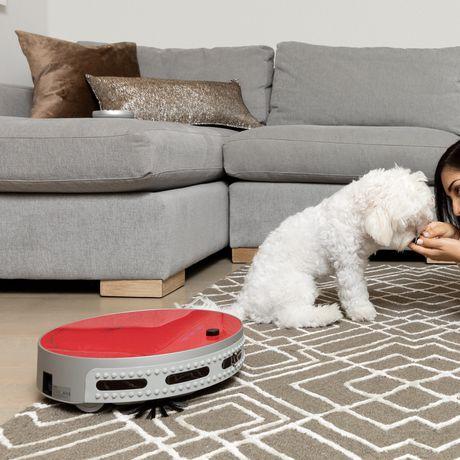 Aspirateur robotique Pet de bObi - image 6 de 8