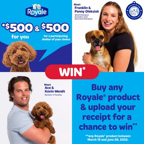 ROYALE® Tiger Towel à 2épaisseurs - fort - demi-feuilles pratiques - grands rouleaux - 6=7 rouleaux - image 2 de 7