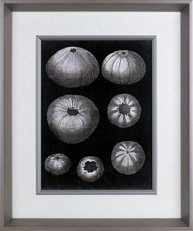 Art naturel imprimé sur toile Rive de mer par ArtMaison Canada - image 1 de 1