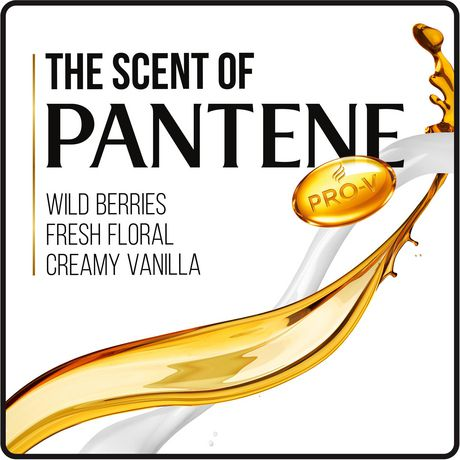 Pantene Pro-V Daily Moisture Renewal Shampoo - image 6 of 7