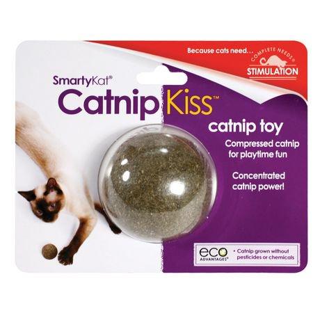 jouet chat walmart
