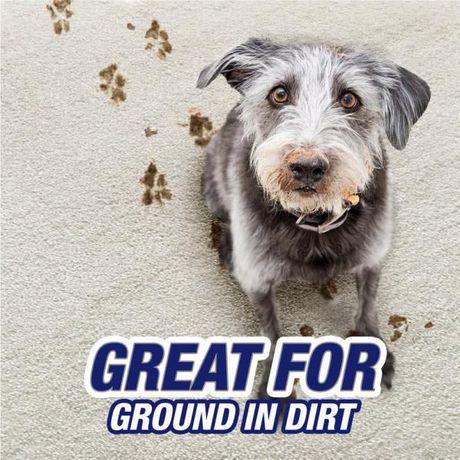 Resolve Pet Dog Amp Cat Carpet Cleaner High Traffic Area