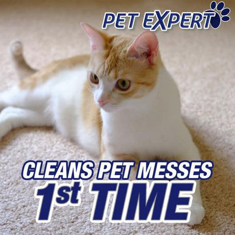 Resolve Pet Dog Amp Cat Carpet Cleaner With Odour Stop