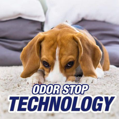 Resolve Pet, Dog & Cat Carpet Cleaner with Odour Stop, Clean & Fresh, Powder, 510 g - image 5 of 7