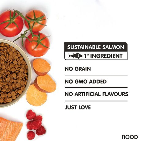 NOOD Small Breed Sustainable Salmon and Lentil Dry Dog Food - image 3 of 9