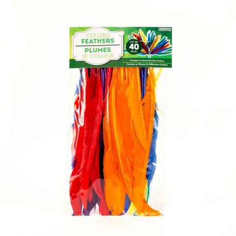 Horizon Group Usa Rainbow Feathers - image 1 of 1