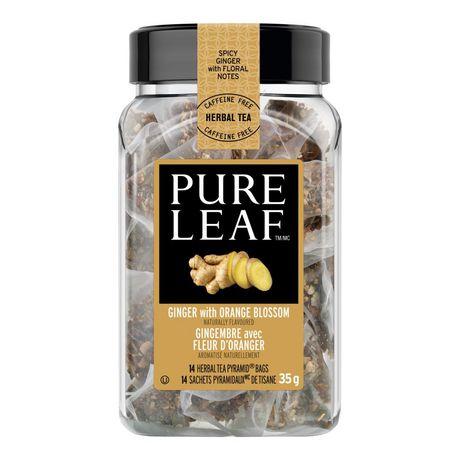 Thé Pure Leaf Chaud Gingembre avec Fleur D'oranger 14 PC - image 3 de 4