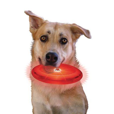 Nite Ize Flashflight Dog Discuit Led Light Up Flying Disc