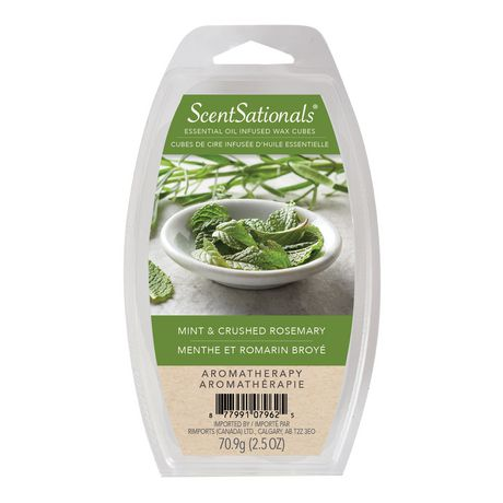 Simply Essentials Mint & Crushed Rosemary Essential Oil Wax - image 1 of 1