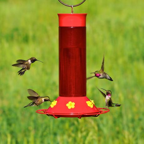 garden feeder song walmart canada humming hummingbird lantern bird oz ip en
